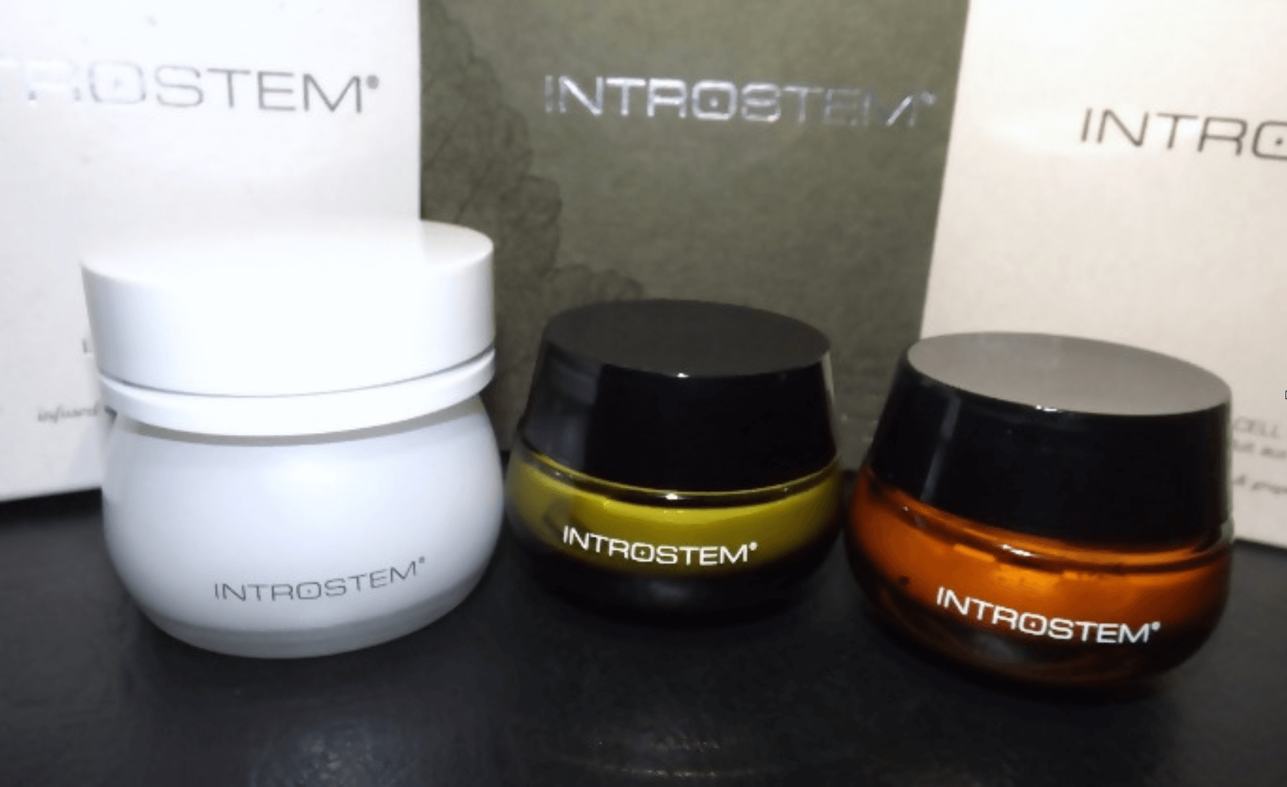 Introstem Review products